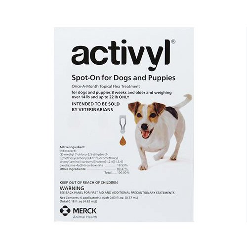 130292349429448000activyl-for-small-dogs-orange