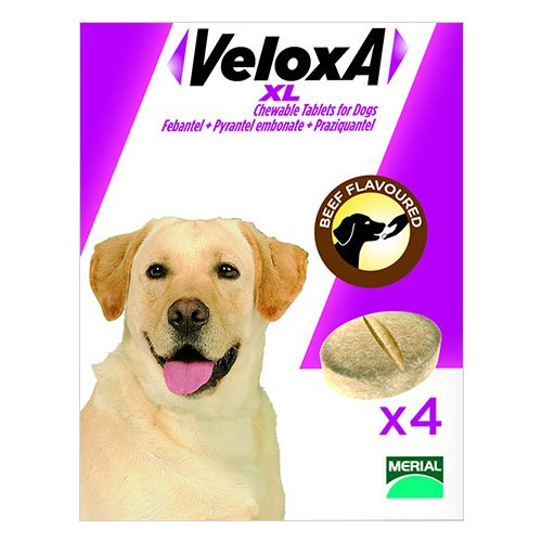 Veloxa  XL Chewable Tablets for Large Dogs up to 35 kg