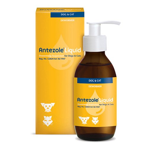 Antezole Liquid Suspension for Dogs & Cats