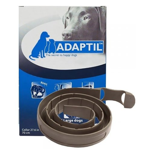 DAP Collar Med/Large Dog
