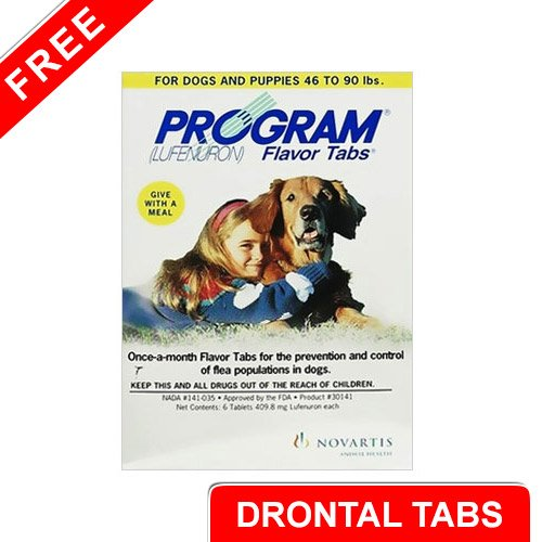 Program Flavour Tabs For Dogs 44.1 - 88 lbs (Grey) - Free Drontal Tabs (Large)