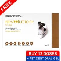 revolution-for-small-dogs-10-1-20lbs-brown-pet-dent-oral-gel