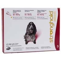 stronghold-dogs-101-200-kg-120-mg-red