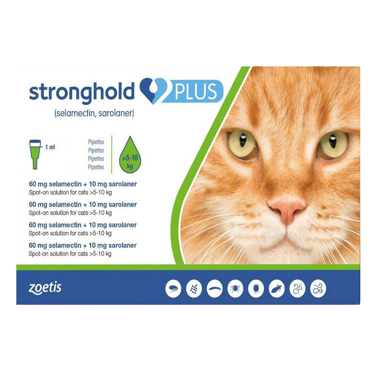 Stronghold Plus