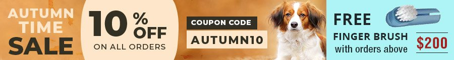 AUTUMN SPECIAL SALE!