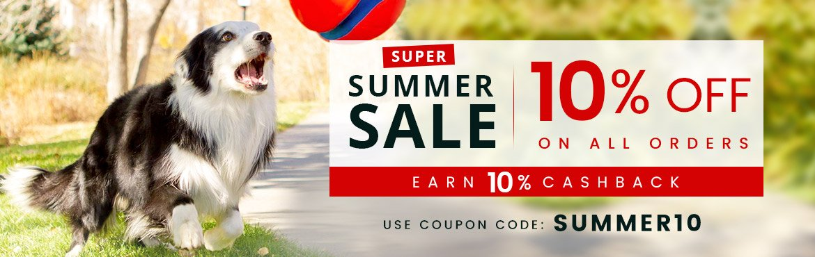 Summer Super Sale!