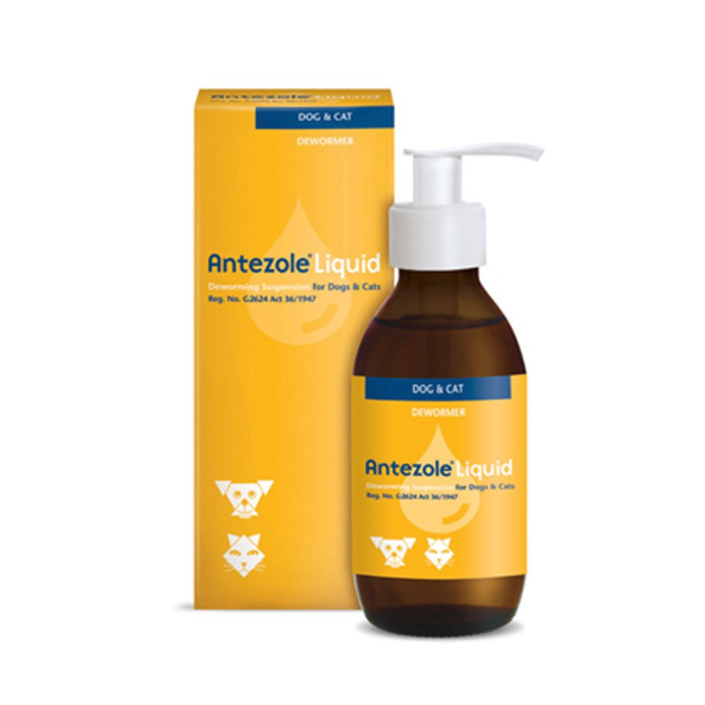Buy Antezole Liquid Suspension for Cats