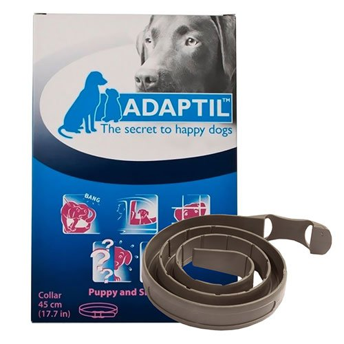 Buy DAP Collar for Dogs