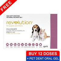 revolution-for-kittens-puppies-pink-pet-dent-oral-gel
