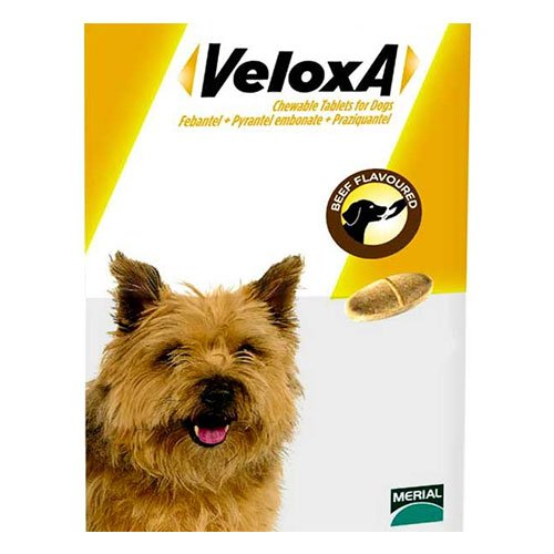 Veloxa  for Dog Supplies